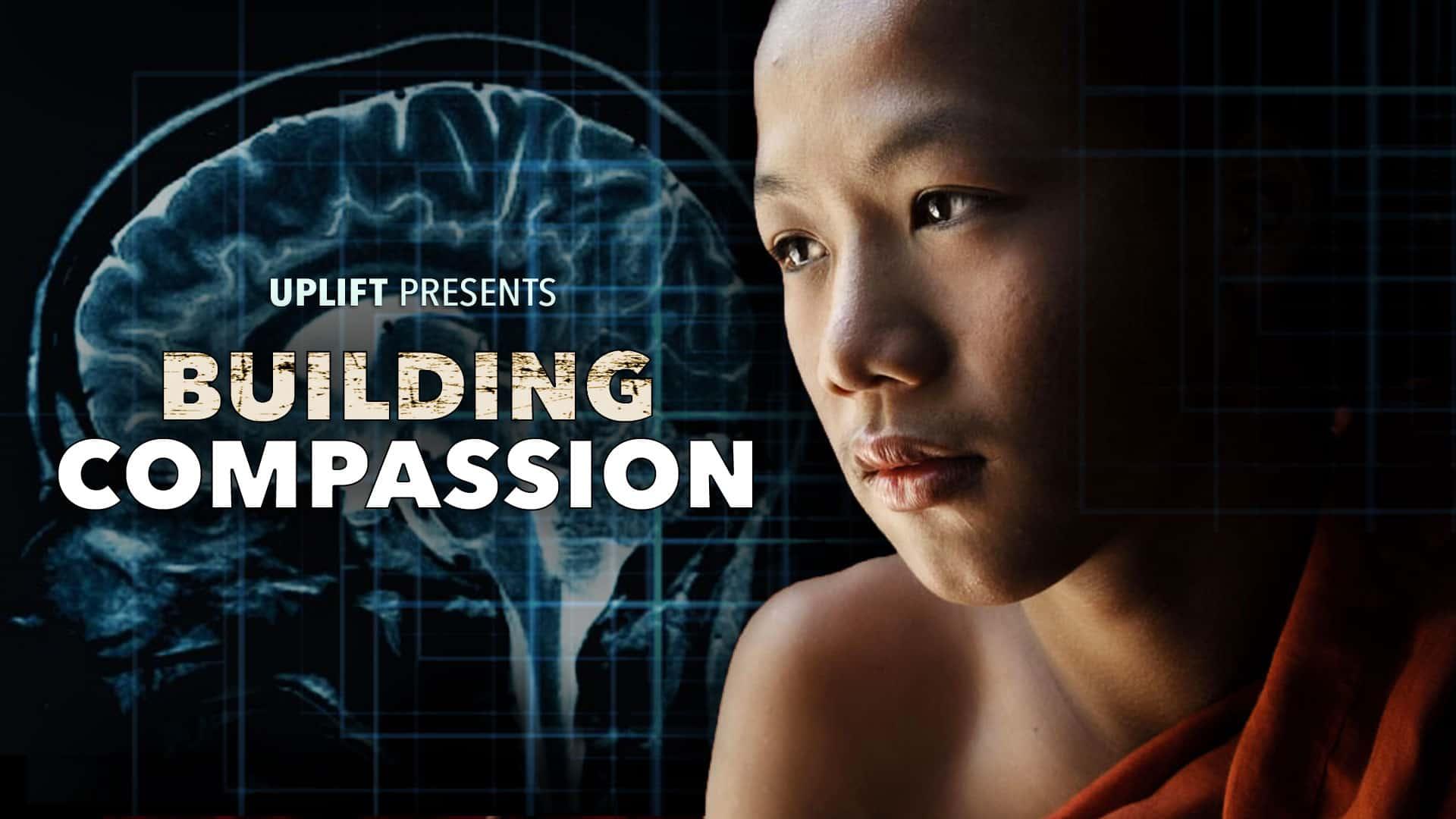 Buildling Compassion