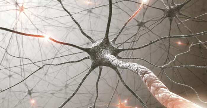 Spontaneous emotions were necessary in order to elicit an electrical reaction in the cells.