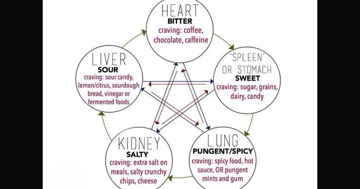 Food cravings indicate organ imbalance