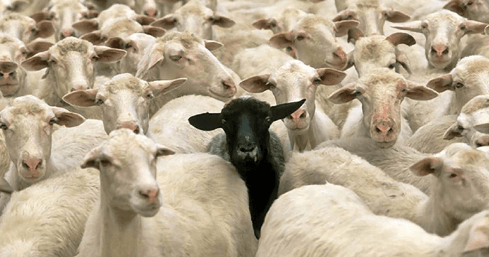 Most of us don't want to stand out in the crowd for negative reasons.