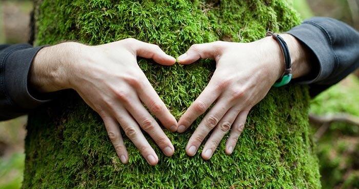 Love will heal the world