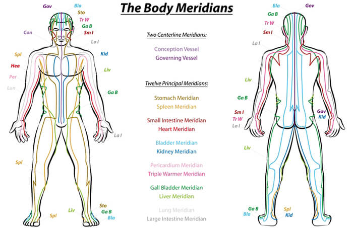 Healing traditions all spoke of energy channels, meridians or Nadis.