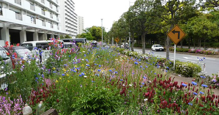 Urban 'green space' done right