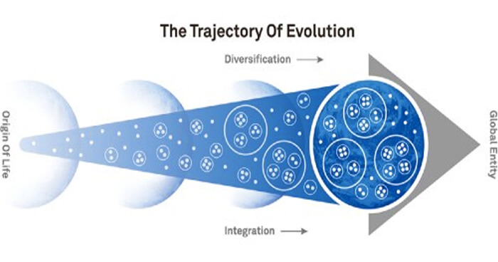 The trajectory of Evolution