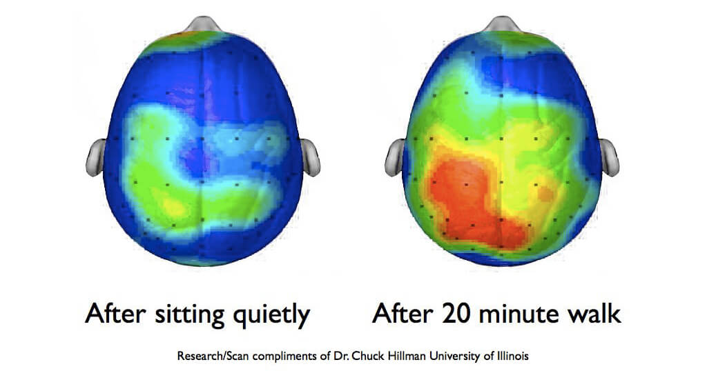 Exercise leads to healthier patterns of brain activity.