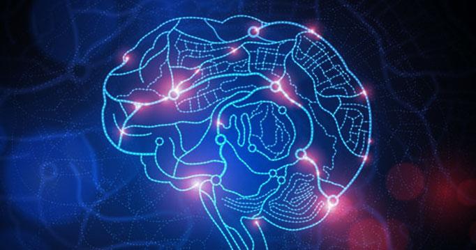 brainImg