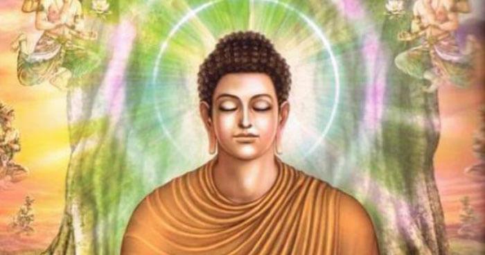 Insight brings Nirvana