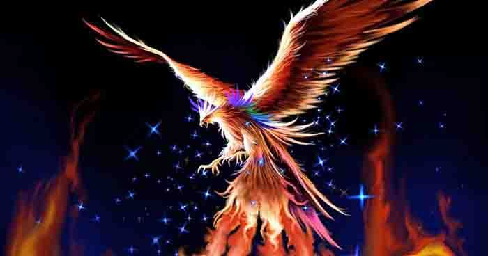 The Phoenix always rises from the ashes of its predecessor.