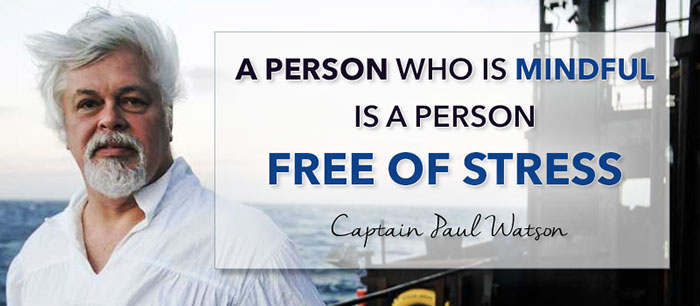 A person who is mindful is a person free of stress