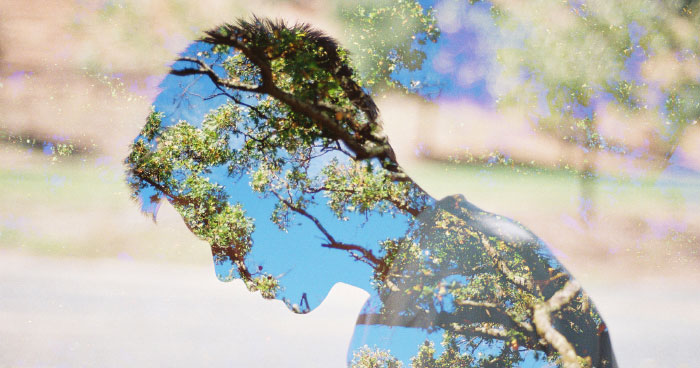 Detoxing the City Brain with Nature