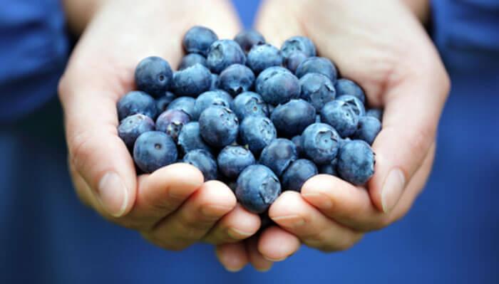 Blueberries Antioxidants