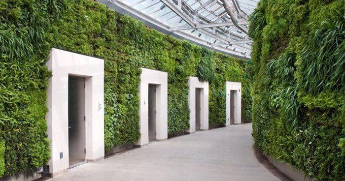 Biomimetic design emulates natural patterns and strategies
