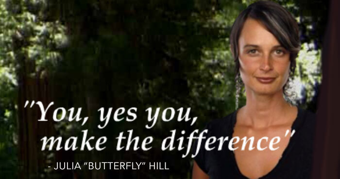 Julia Butterfly Hill Quote