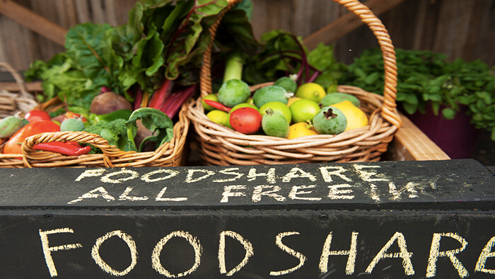 Food is Free promotes connection, sharing and empowerment