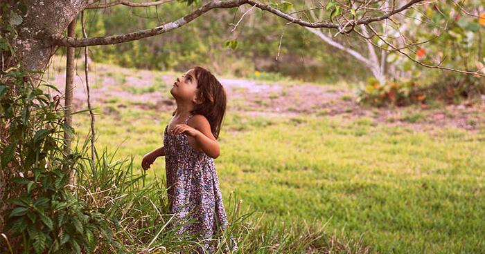 Girl looking at tree.
