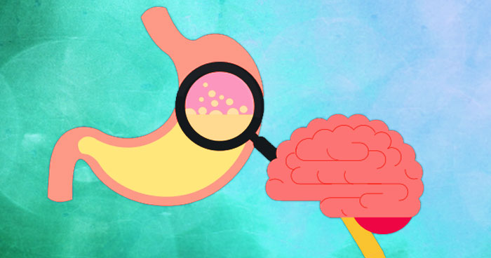 Are your gut feelings controlling your brain and mood