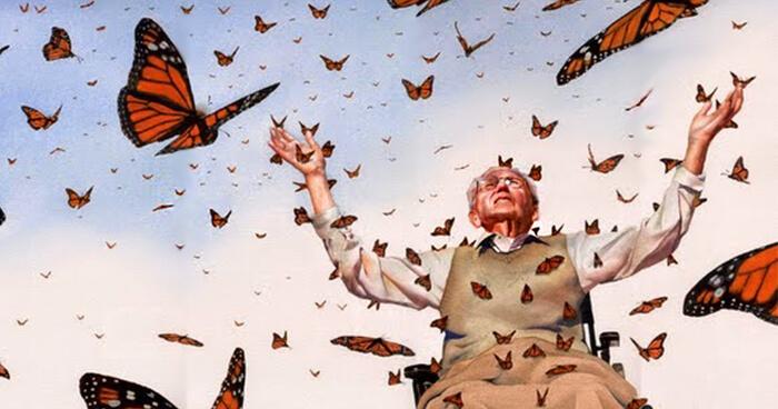Old man butterfly effect