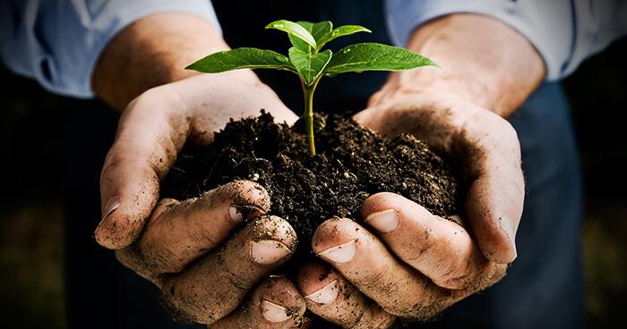 We need plants