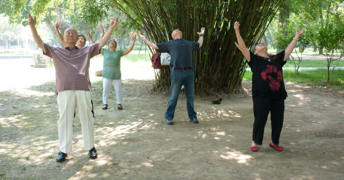 Qi gong for the thymus