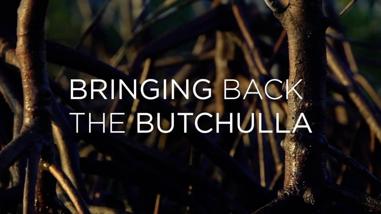 BRINGING BACK THE BUTCHULLA