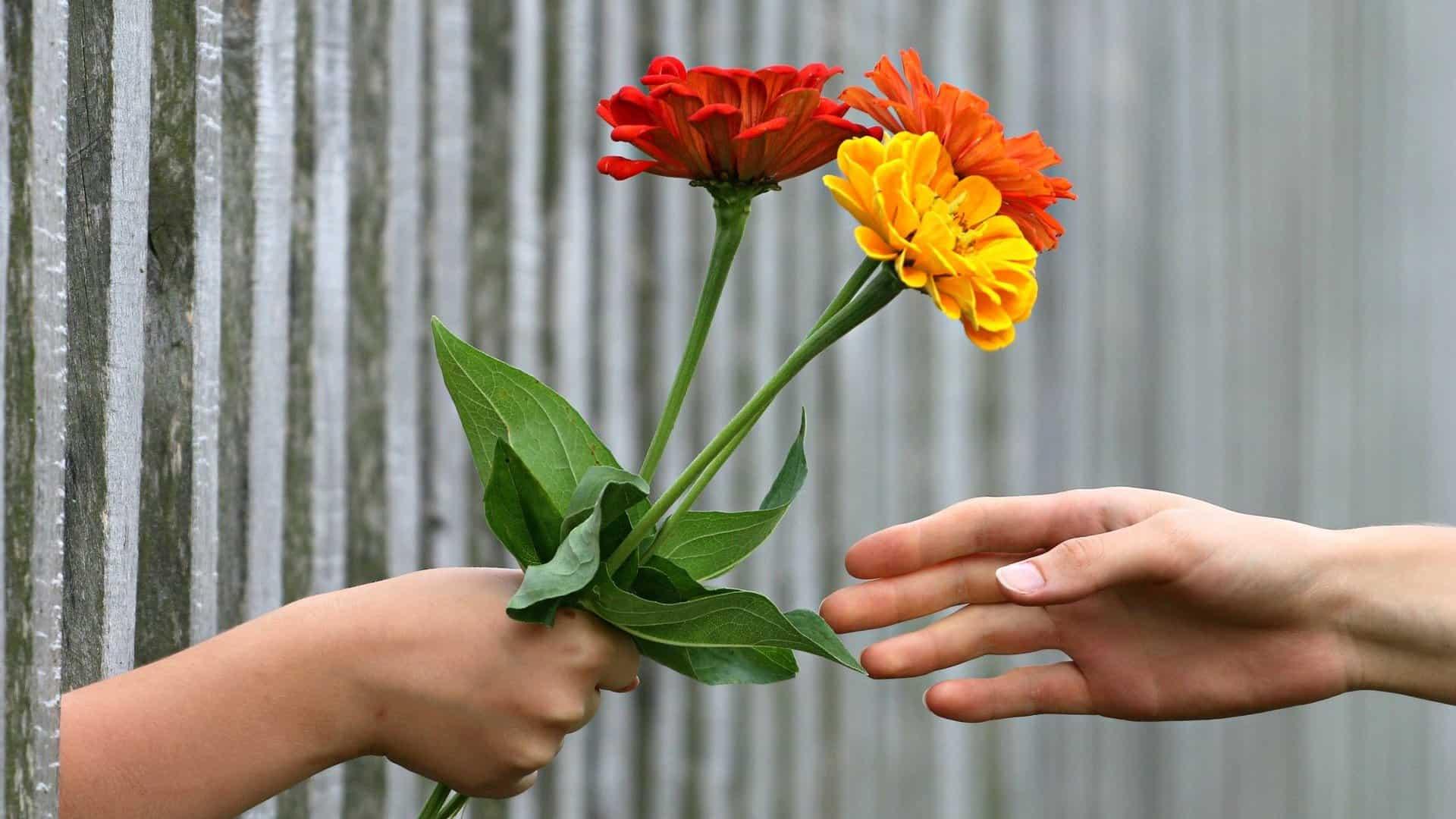 Sharing a Kindness