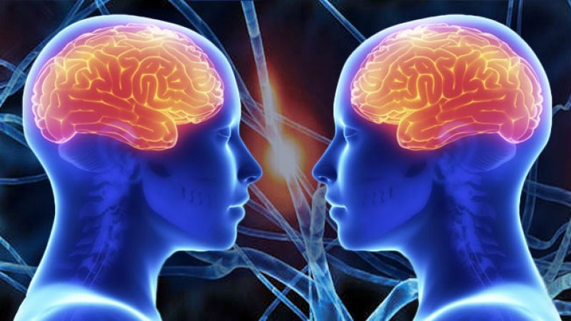 NeuroscienceCompassionFeature