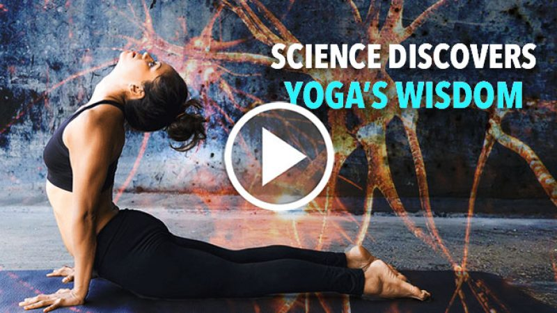 ScienceDiscoversYogaWisdomFeature